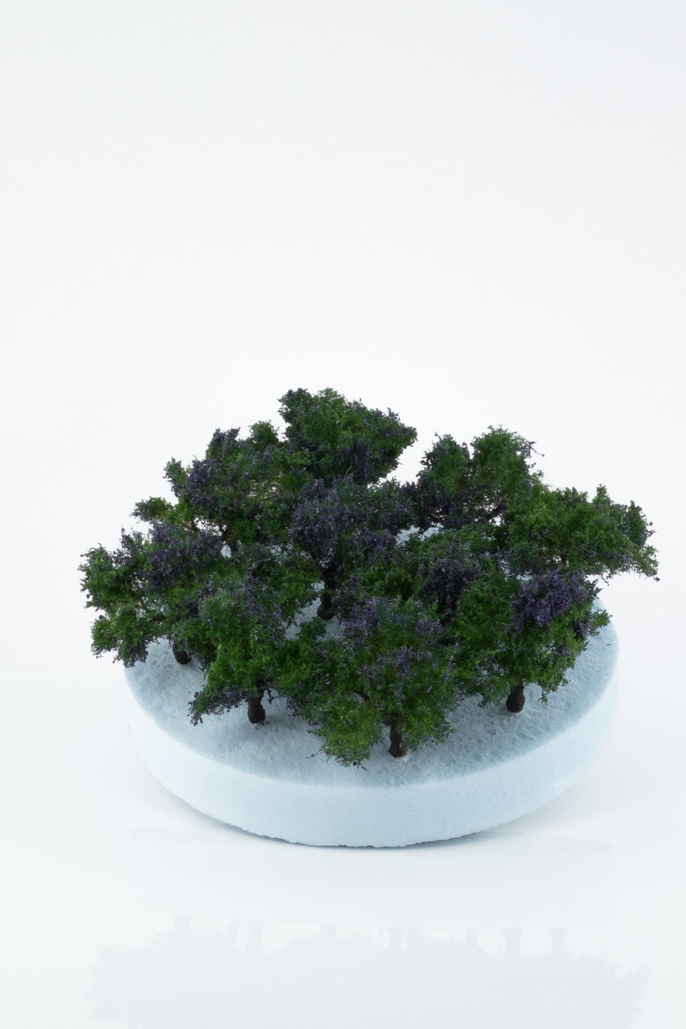 Ten pieces, regular purple model bushes. Size between 2 and 4 cm. Made from high quality model supplies by Primo Models.