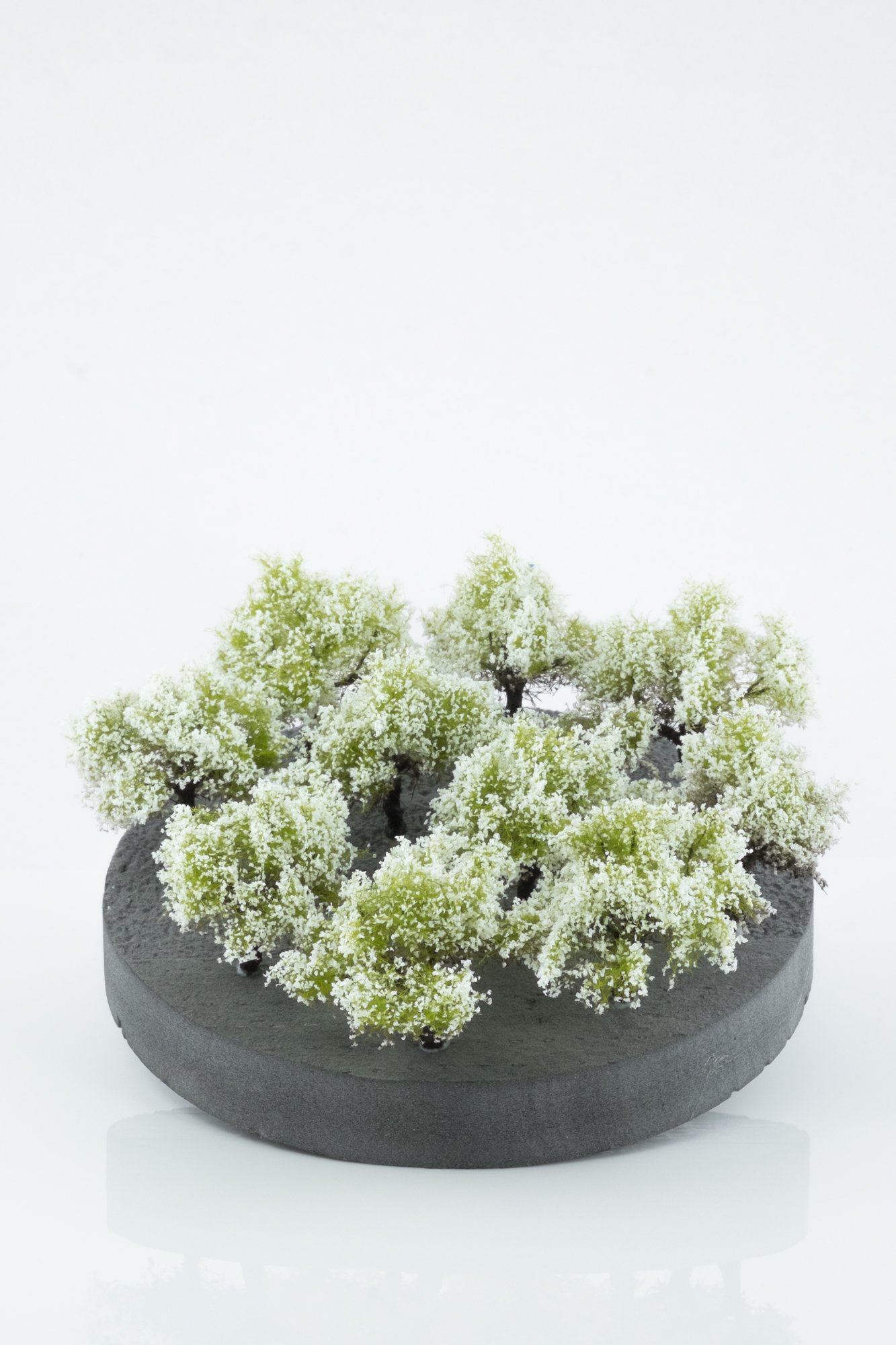Ten pieces, regular white model bushes. Size between 2 and 4 cm. Made from high quality model supplies by Primo Models.