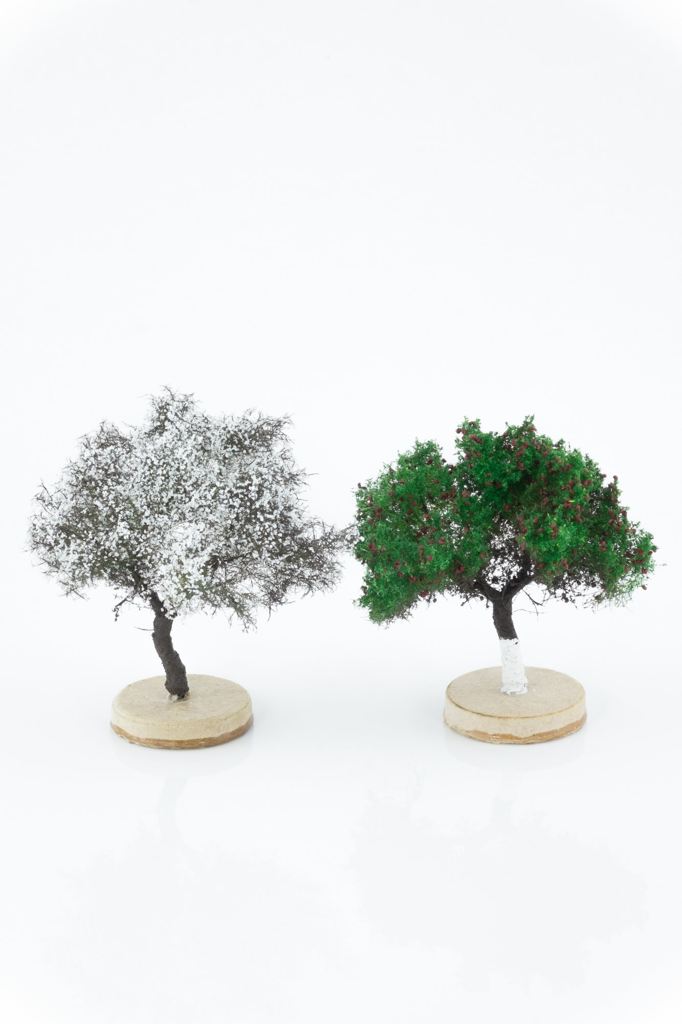 Two types of hand-made, apple model trees. Size between 6 and 8 cm. Made from high quality model supplies by Primo Models.
