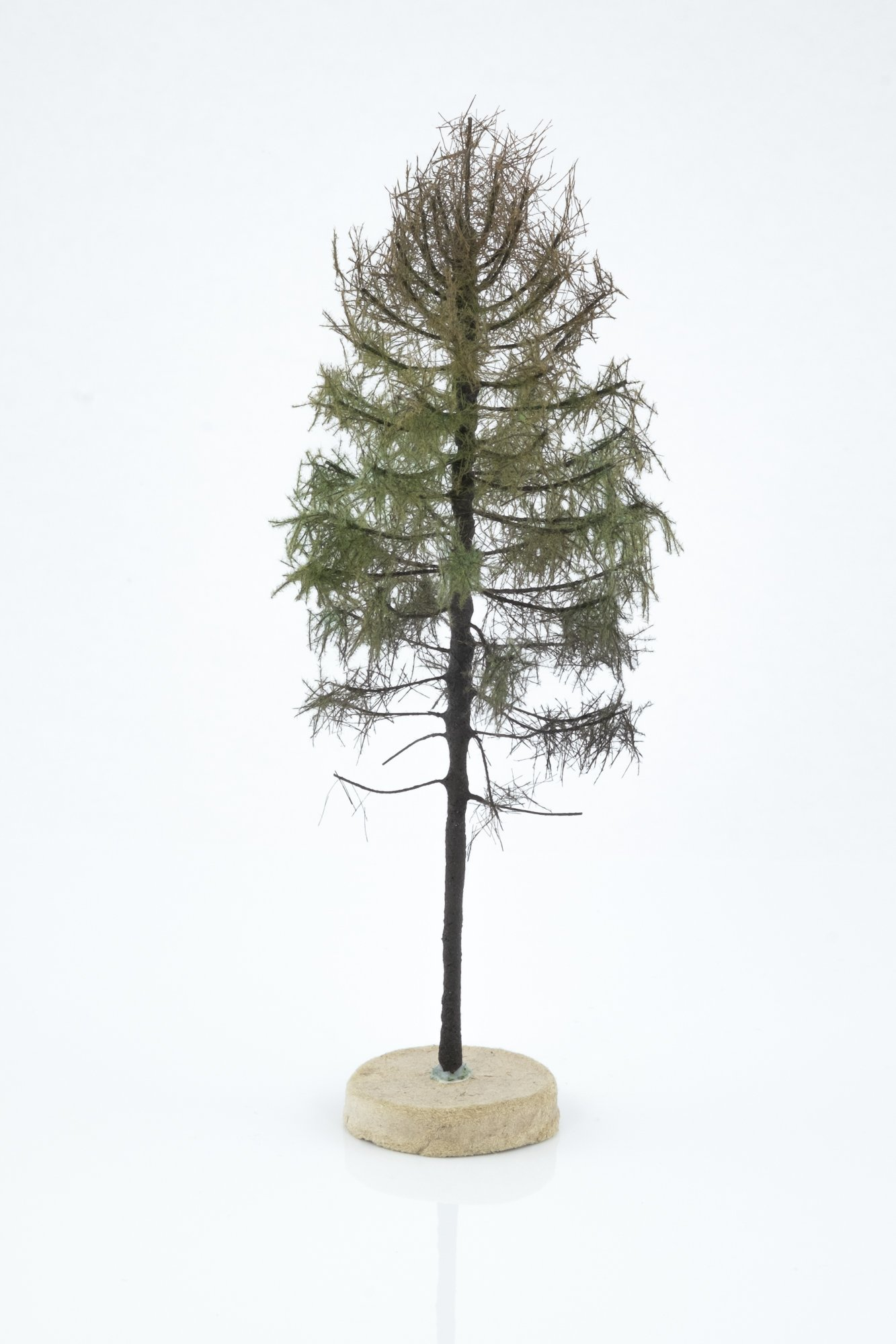Hand-made, green, dry larch tree model. Size between 14 and 16 cm. Made from high quality model supplies by Primo Models.