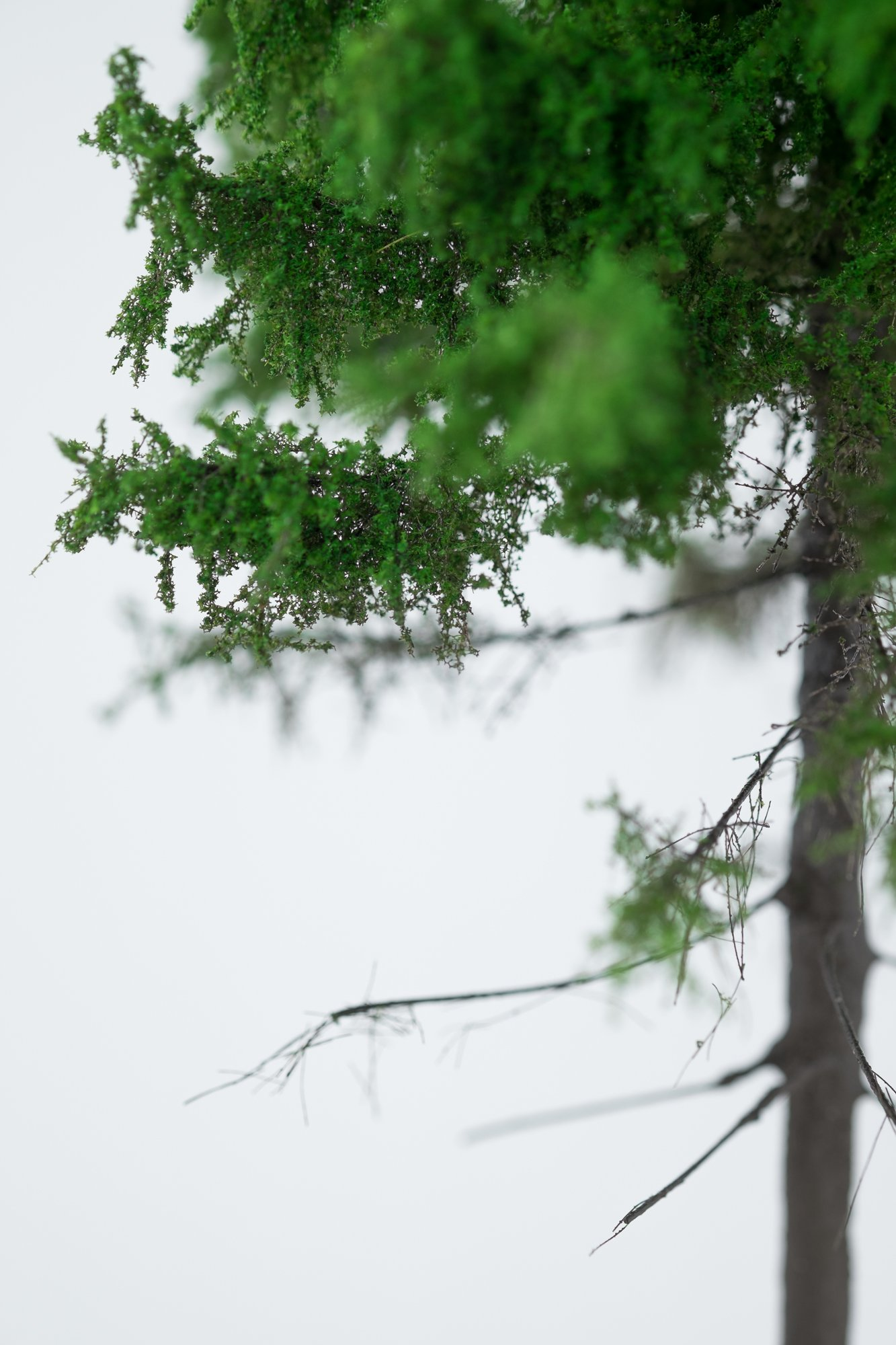 Closeup of forest larch tree model. Made from high quality model supplies by Primo Models.