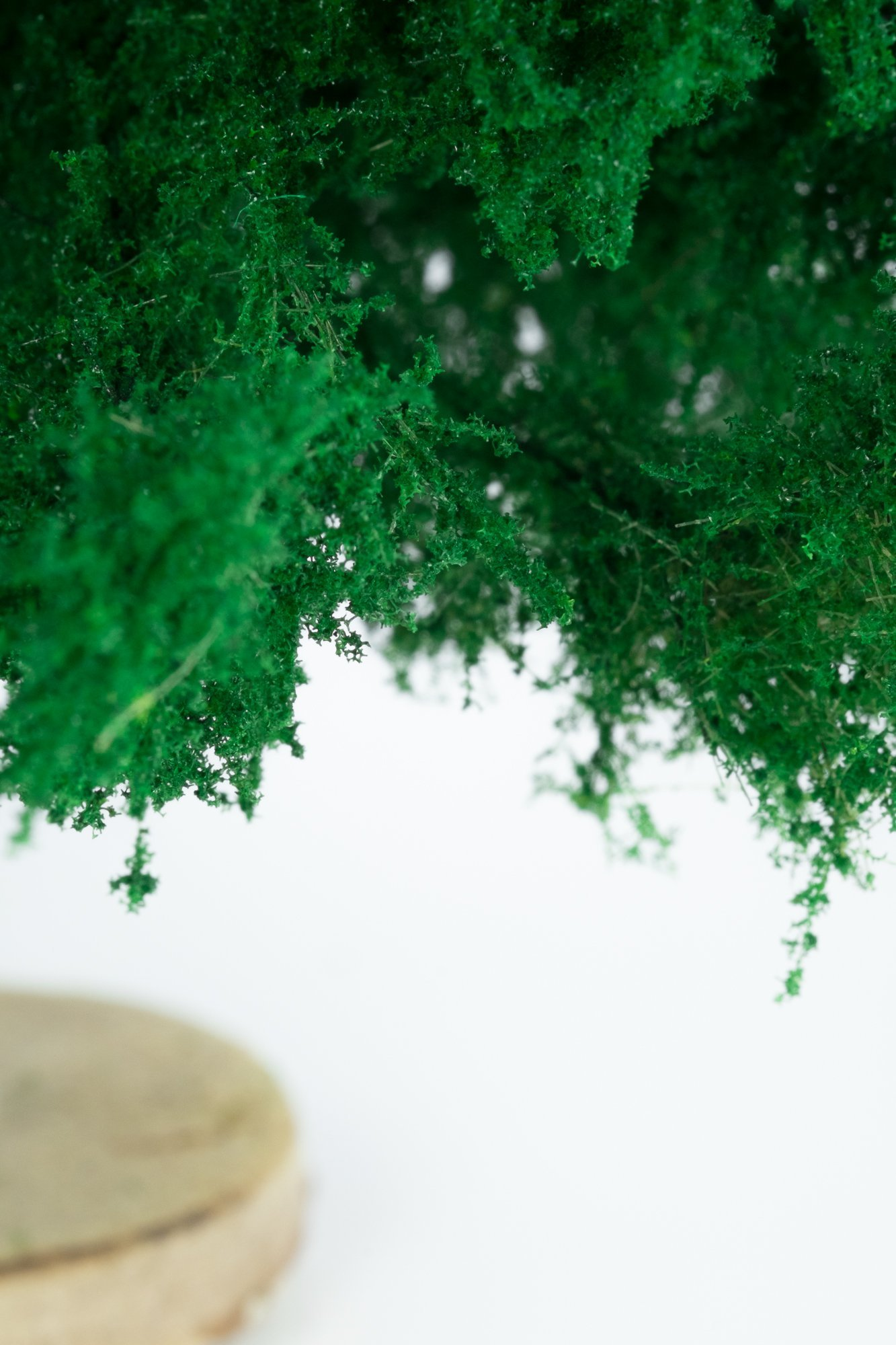 Closeup of foliage on smallest spruce tree model. Made from high quality model supplies by Primo Models.