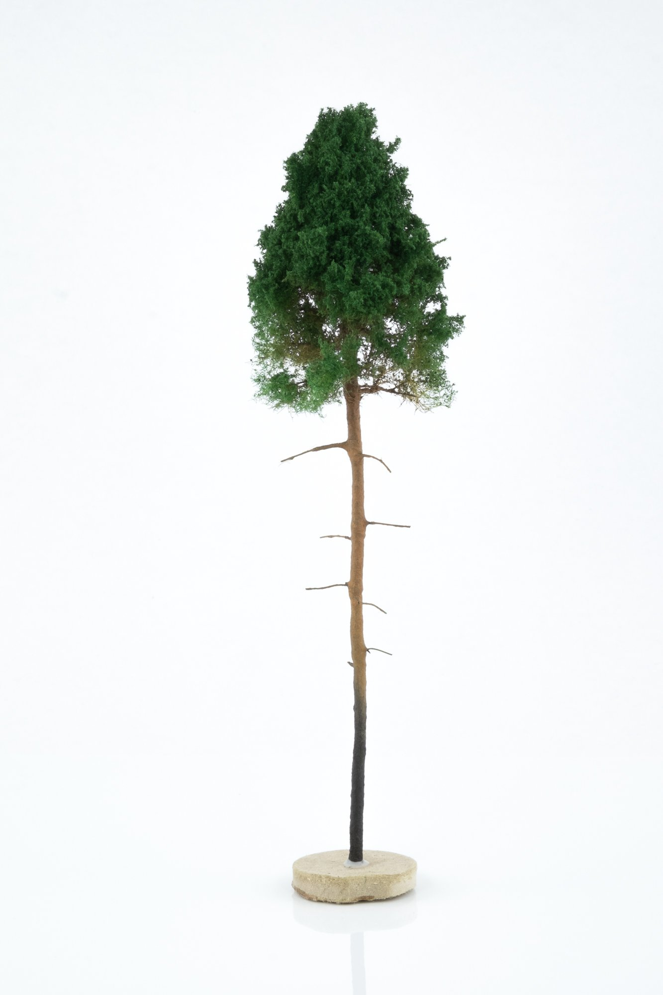 Hand-made, green, young pine tree model. Size between 14 and 16 cm. Made from high quality model supplies by Primo Models.