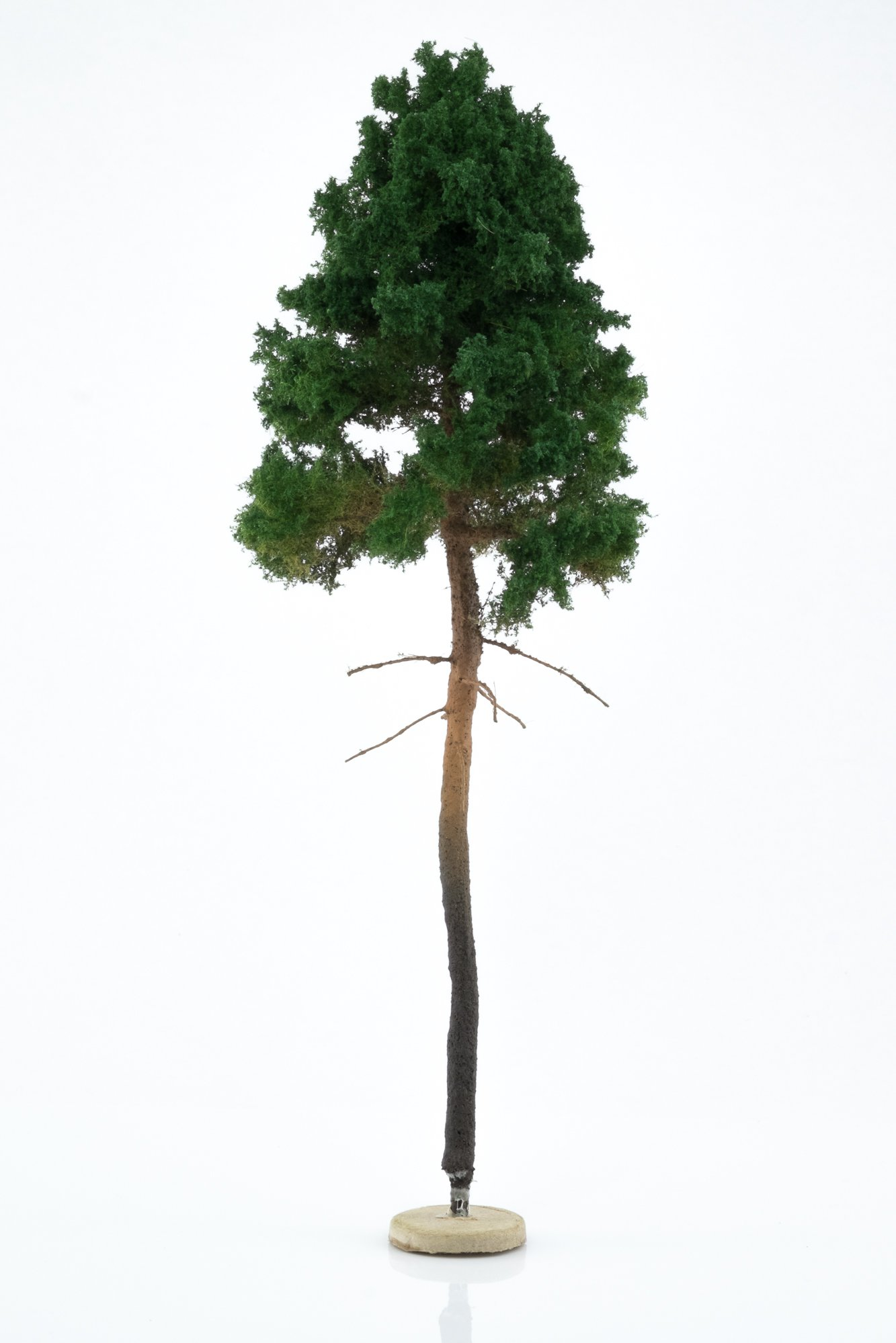 Hand-made, green, young pine tree model. Size between 26 and 28 cm. Made from high quality model supplies by Primo Models.