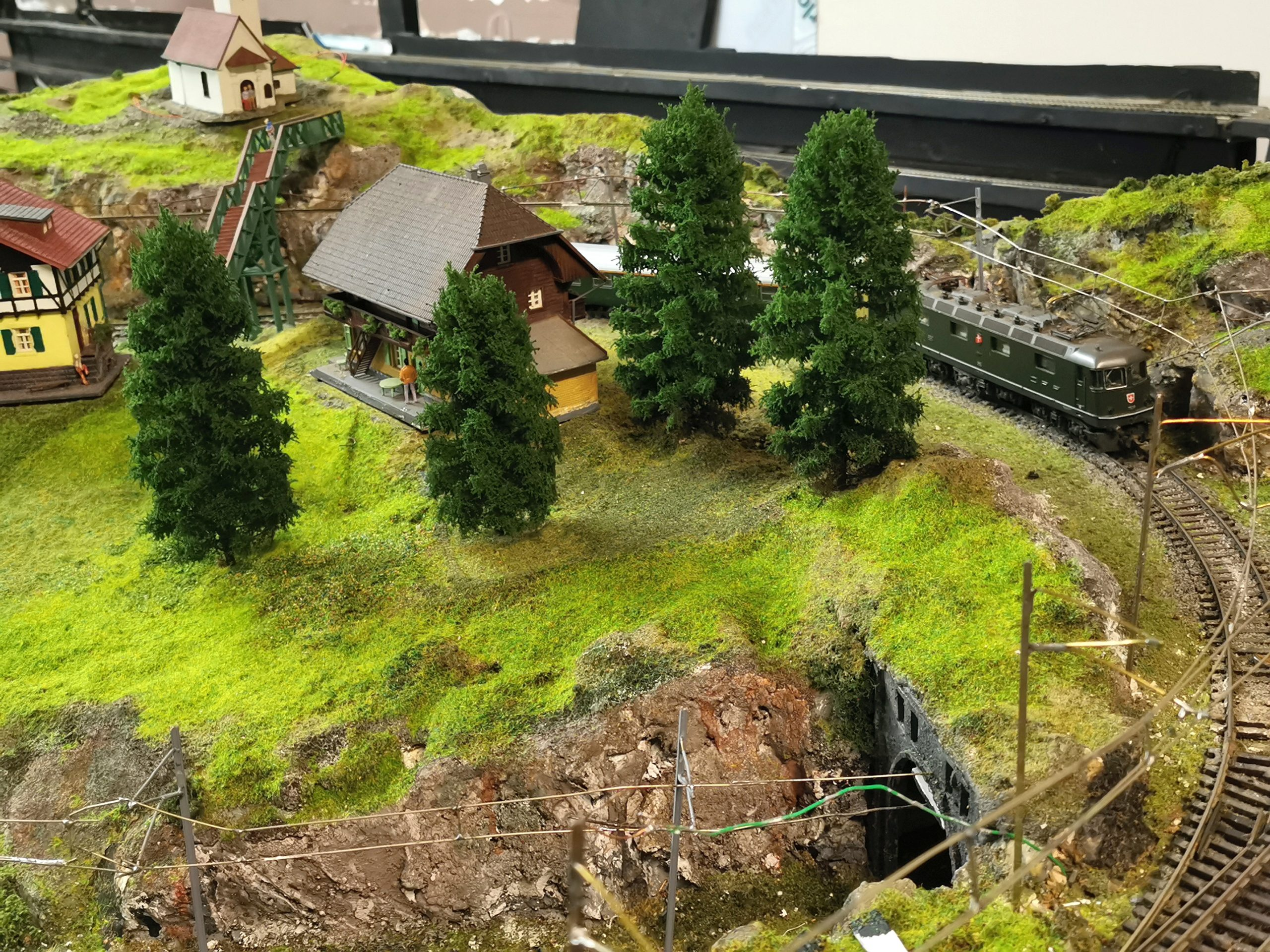 Primo Models trees on the layout of Clydeside Model Railway Club